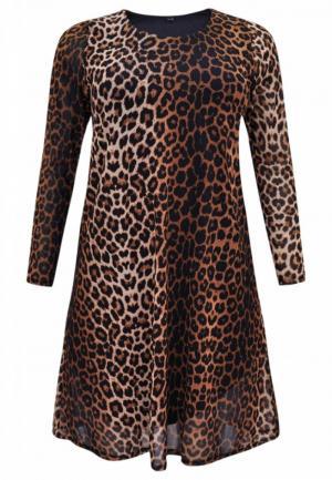 280/leopard